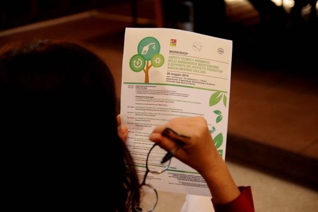 Aspetti-tecnici-e-normativi-delle-agroenergie-mediterranee-a-supporto-dei-distretti-produttivi-agroalimentari-siciliani