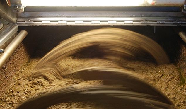 Start-up-per-valorizzazione-le-biomasse